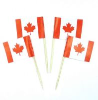 50 Minifahnen Dekopicker Kanada 30 x 40 mm