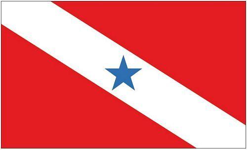 Fahne / Flagge Brasilien - Pará 90 x 150 cm