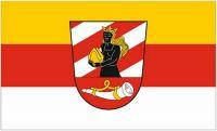 Fahne / Flagge Landkreis Neu-Ulm 90 x 150 cm
