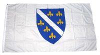 Fahne / Flagge Bosnien alt 90 x 150 cm
