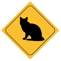 Aufkleber Sticker Achtung Katze Autoaufkleber