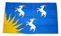 Fahne / Flagge Wales - Merionethshire 90 x 150 cm