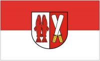 Fahne / Flagge Landkreis Harz 90 x 150 cm