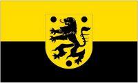 Fahne / Flagge Oelsnitz Vogtland 90 x 150 cm