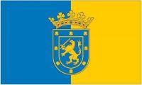 Flagge / Fahne Santiago de Chile Hissflagge 90 x 150 cm