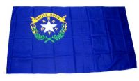 Fahne / Flagge USA - Nevada 90 x 150 cm