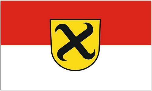 Fahne / Flagge Pleidelsheim 90 x 150 cm