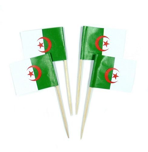 50 Minifahnen Dekopicker Algerien 30 x 40 mm