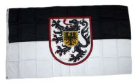 Flagge / Fahne Landau Hissflagge 90 x 150 cm