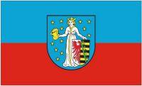 Fahne / Flagge Coswig Anhalt 90 x 150 cm