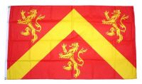 Fahne / Flagge Wales - Anglesey 90 x 150 cm