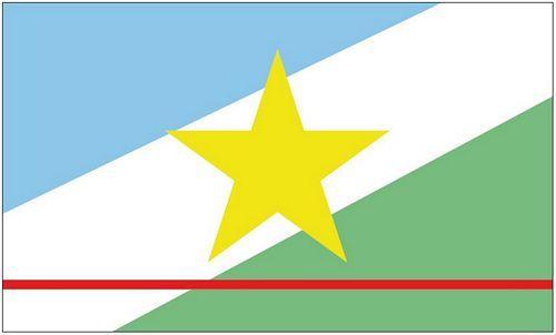 Fahne / Flagge Brasilien - Roraima 90 x 150 cm